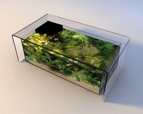 Image table basse aquarium