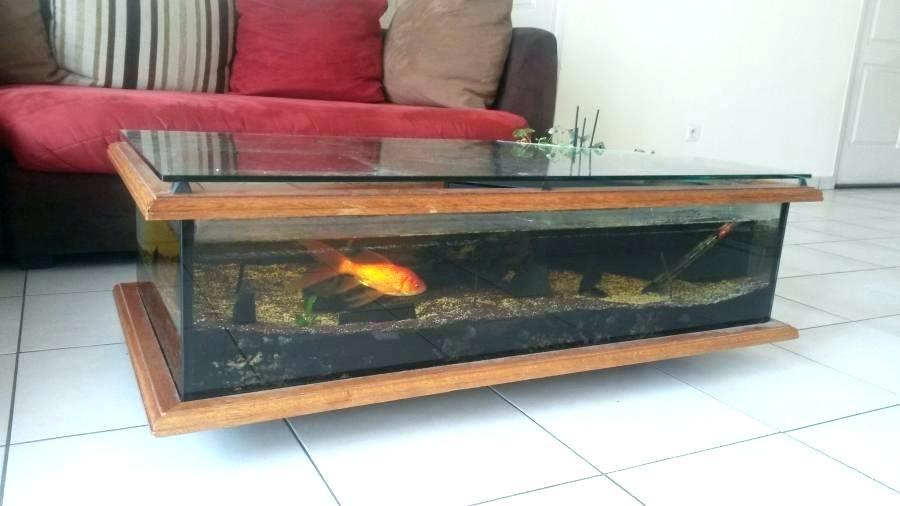 Table basse aquarium carre
