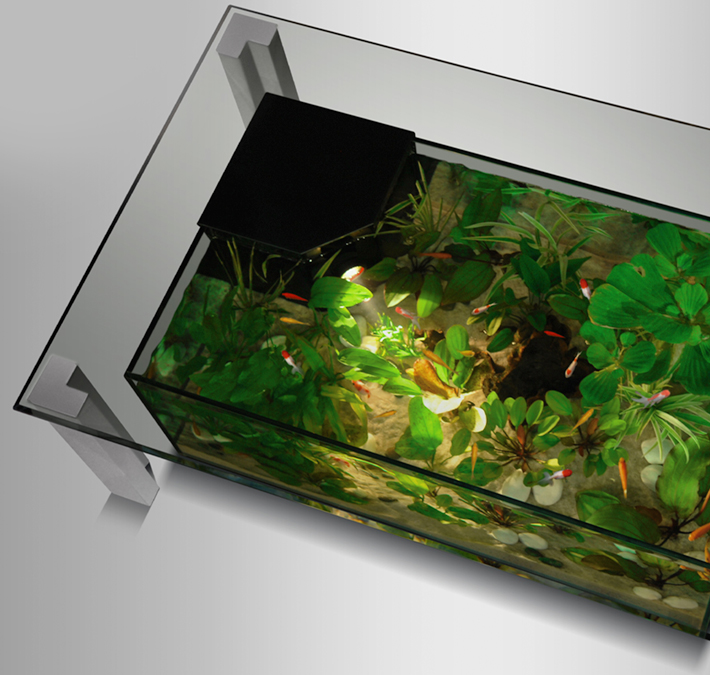 Table basse carrée aquarium